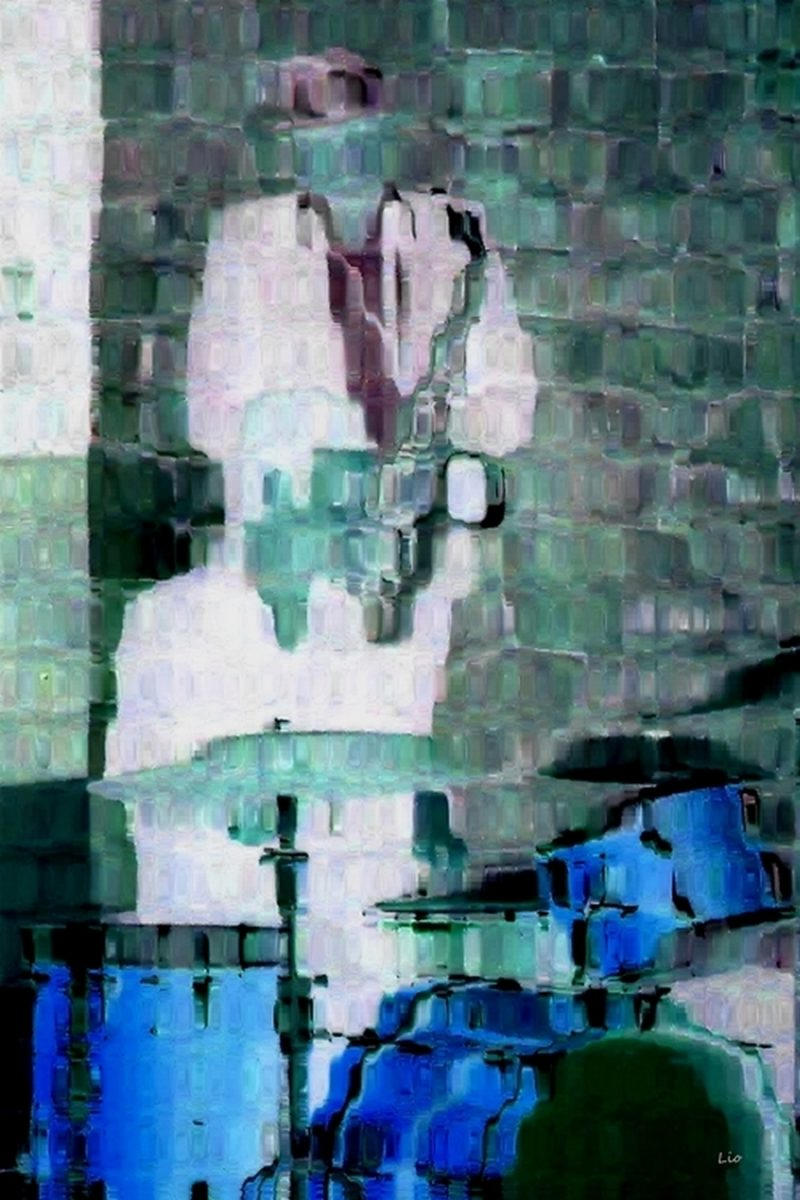 Bop 7 lio photo peintures
